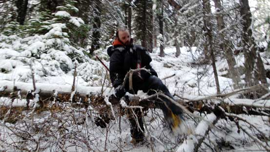 Bushwhacking with crampons on.
