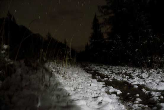 Night scene from Jasques Lake trail. Photo by Ben