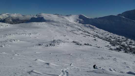 No wonder why snowmobilers like Clemina Creek area. Would be prime ski terrain too!