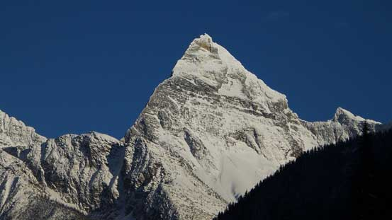 Mt. Sir Donald