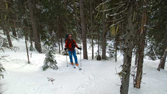 """Open trees skiing into the """"unknown"""". Up and over the next rib we'd traverse along a long flat bench."""