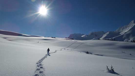 Nice and open terrain