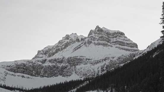 Peyto Peak looks very impressive from this angle!