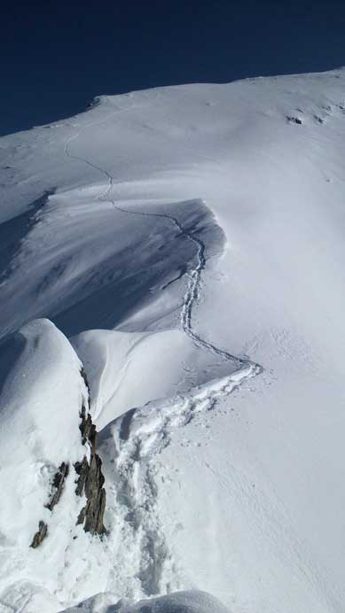 Looking back at my tracks on the upper mountain