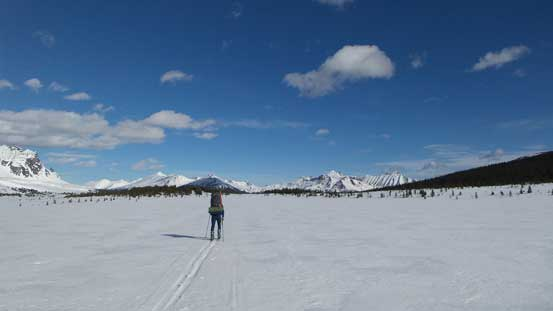 Liam skiing across the flats
