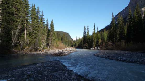 We crossed Rice Brook at a braided section about 100 m upstream from the old bridge site