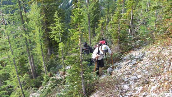 Ascending steep forested terrain