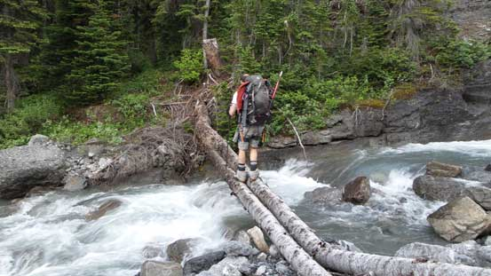 We crossed this log bridge by mistake. Should have gone straight up to exit the trees