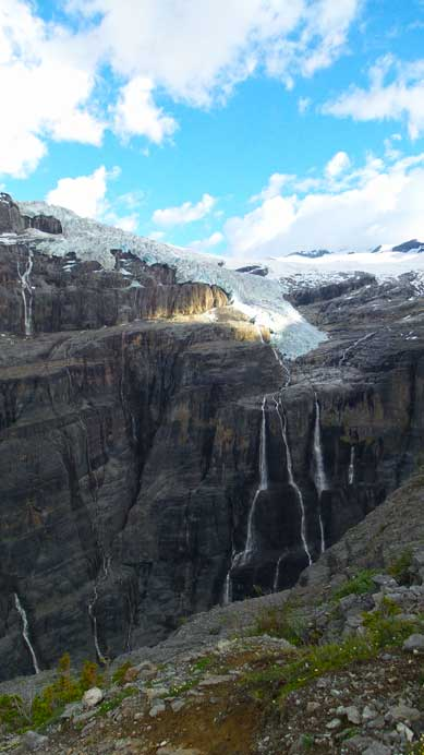 The Lyell Icefield draining the Icefall Brook