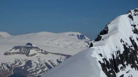 Snow Dome and part of Lyell IV's south ridge