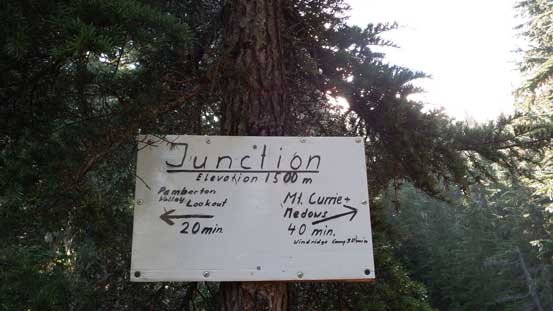 The first signed junction
