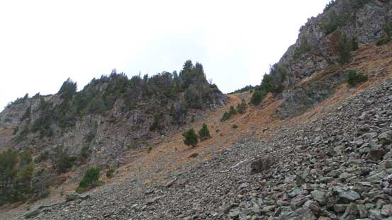 A look at the steep gully that I ascended after leaving the trail