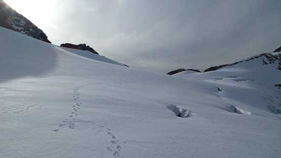 My tracks and more crevasses...