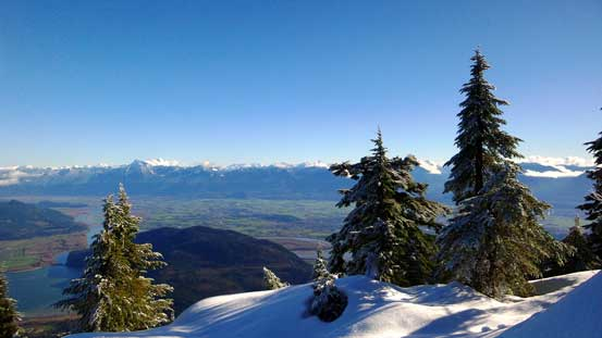 One last view of Fraser Valley before dropping into the forest