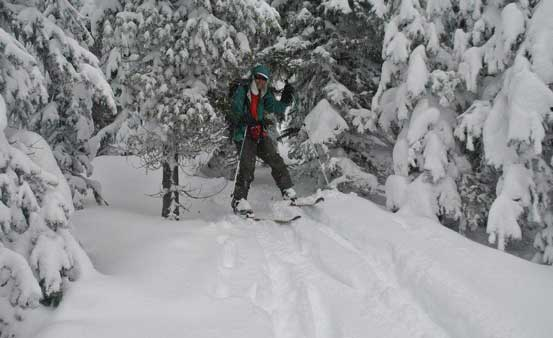 Tree skiing... Photo by Alex