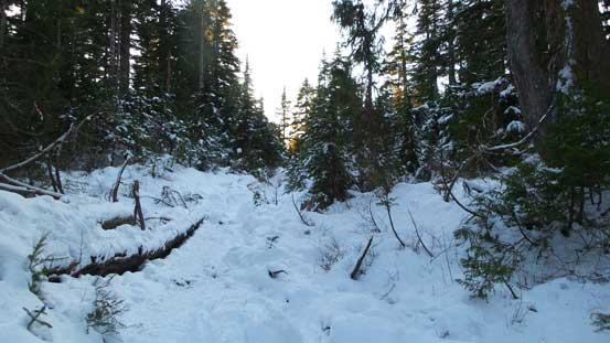 Hiking along the Dog Mountain Trail