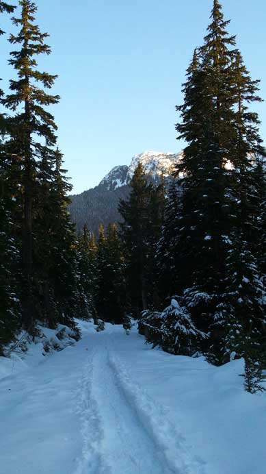 The snowshoe trail was packed down