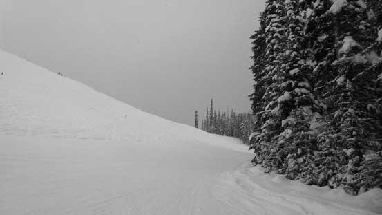 Skinning up the ski hills