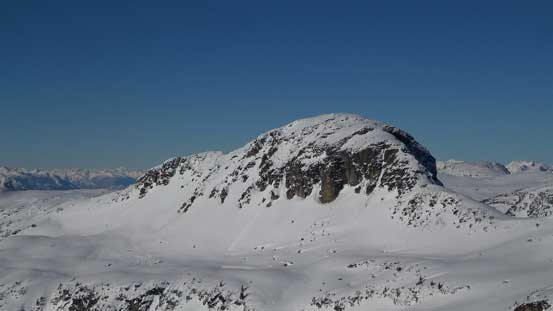 Anemone Peak