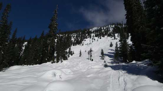 The road crosses an impressive avalanche path at one point