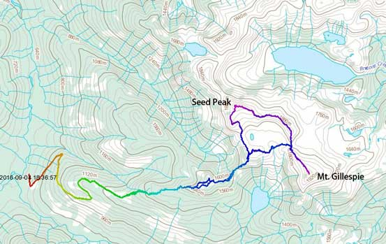 Mt. Gillespie and Seed Peak scramble route
