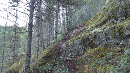 Then up the side-branch. This is the typical terrain