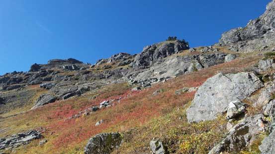 Neat fall colours!