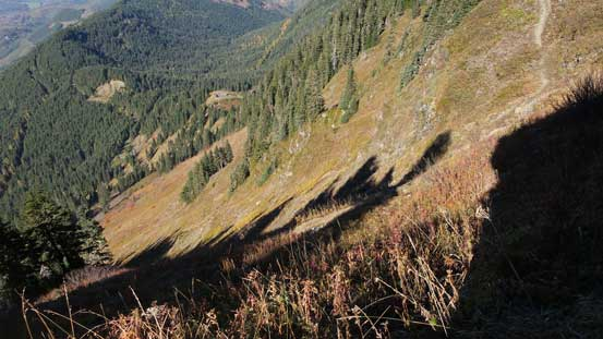 This is that steep avalanche path that the trail descends