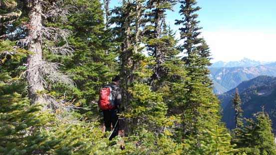 More about the forested ridge traverse
