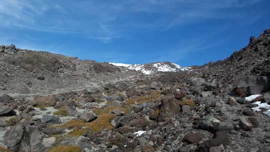 Typical terrain.