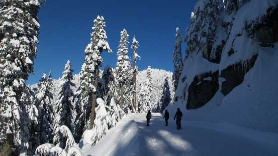 This is that logging road section traversing beside Grouse Mountain