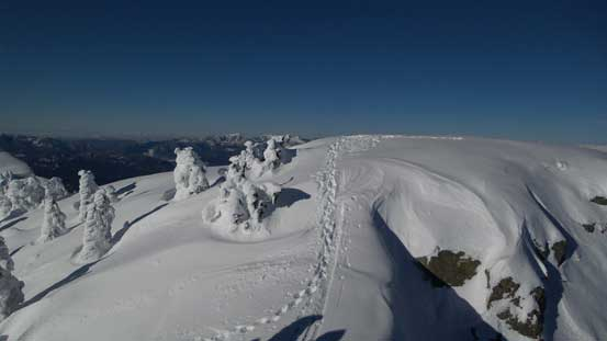 My tracks on the summit