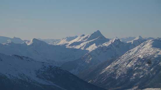 Saxifrage Peak
