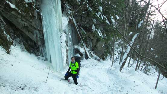 Checking out some huge icicles.