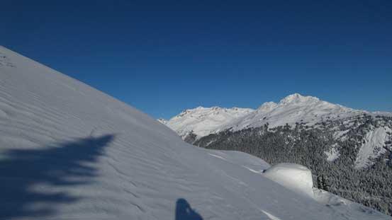 Into the alpine now.