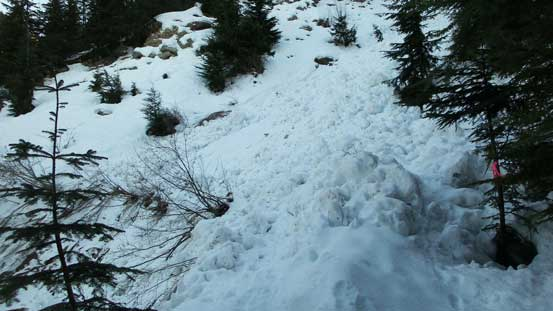 Crossing this big avalanche gully
