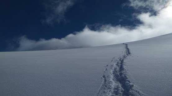 Snowshoe tracks on Matier Glacier